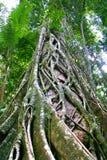 Crique d'Eli, île de Faser, Australie Images libres de droits