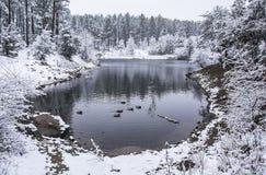 Crique d'hiver Photos stock
