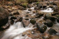 Crique dans l'automne avec les trembles #9 Photo stock