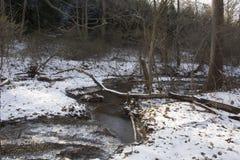 Crique dans le paysage gelé d'hiver images libres de droits