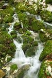 Crique dans les montagnes de Mehedinti Photos libres de droits