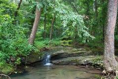 Crique de baie, Shawnee National Forest, l'Illinois, Etats-Unis Photographie stock