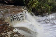 Crique de cascade Photos libres de droits