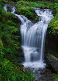 Crique de Covel, Washington State Image stock