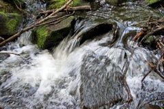 Crique de montagne Photo libre de droits