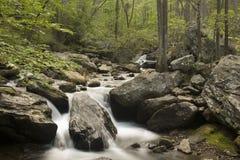Crique de montagne Images libres de droits