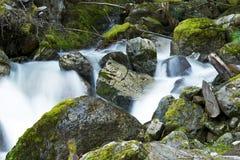 Crique de montagnes de cascade Photos libres de droits