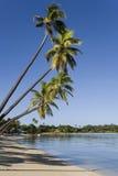 Crique de mousquet dans les îles de Yasawa - Fiji image libre de droits