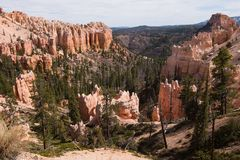 Crique de moutons, Bryce Canyon Image stock
