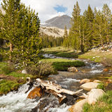 Crique de Whitney, sierra Nevada Photos libres de droits