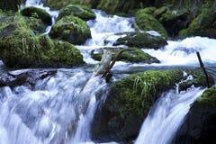 Crique en Alaska Photos libres de droits