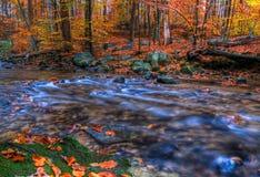 Crique en automne Photos libres de droits
