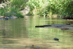 Crique et eau Images stock