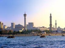Crique et minarets image libre de droits