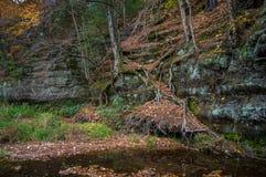 Crique latérale de falaise Image stock