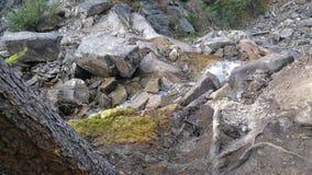 Crique rocheuse photos libres de droits