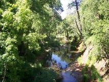 Crique Sedona de chêne Images libres de droits