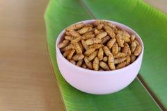 Crisálidas del capullo Alimento tailandés - fritada #6 del Stir Imagenes de archivo