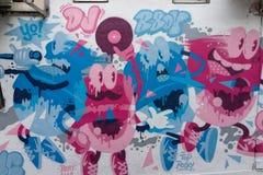Crisântemo cor-de-rosa no jardim Fotografia de Stock Royalty Free