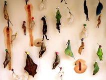 Crisalide della farfalla Fotografia Stock