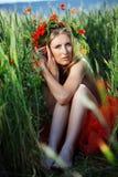 Crisalide floreale fotografia stock libera da diritti