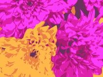 Crisantemi astratti Immagine Stock Libera da Diritti