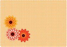 Crisantemi nel vimine Fotografie Stock Libere da Diritti