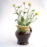 Crisantemi in una brocca verde Immagine Stock Libera da Diritti