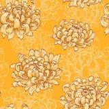 Crisantemo amarillo Imagenes de archivo