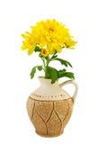 Crisantemo amarillo en el florero Imagenes de archivo