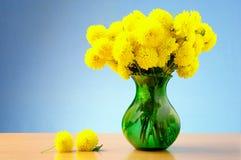 Crisantemo amarillo hermoso Foto de archivo libre de regalías