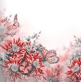 Crisantemo brillante de la primavera Imágenes de archivo libres de regalías