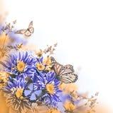 Crisantemo brillante de la primavera Fotos de archivo