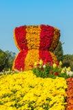Crisantemo coloreado brillante del otoño Imagen de archivo