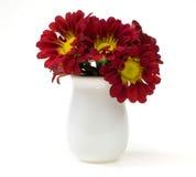 Crisantemo en el florero Imágenes de archivo libres de regalías