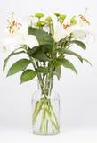 Crisantemo, garofani e gigli bianchi fotografia stock libera da diritti
