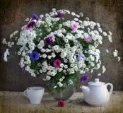 Crisantemos blancos y corn-flowers coloreados Fotografía de archivo