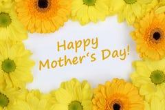 Crisantemos de las flores el día de madres foto de archivo