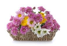 Crisantemos en cesta Fotos de archivo