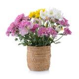 Crisantemos en cesta Imagen de archivo