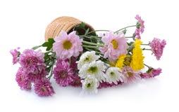 Crisantemos en cesta Fotografía de archivo libre de regalías