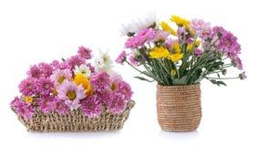 Crisantemos en cesta Foto de archivo