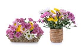Crisantemos en cesta Imágenes de archivo libres de regalías