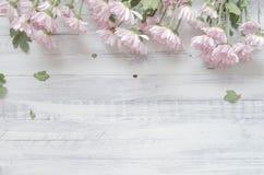 Crisantemos en un fondo de madera rústico Imagenes de archivo