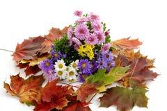 Crisantemos rosados, amarillos, blancos y asteres púrpuras en las hojas de otoño Imagen de archivo libre de regalías