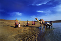 Crise d'eau au Ràjasthàn Images libres de droits