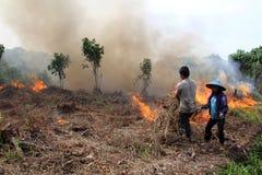 Crise da poluição atmosférica Fotos de Stock Royalty Free
