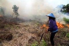 Crise da poluição atmosférica Imagens de Stock Royalty Free