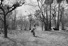 Crisis del agua en la India Fotografía de archivo libre de regalías