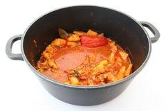 Crisol con la sopa Imagen de archivo libre de regalías